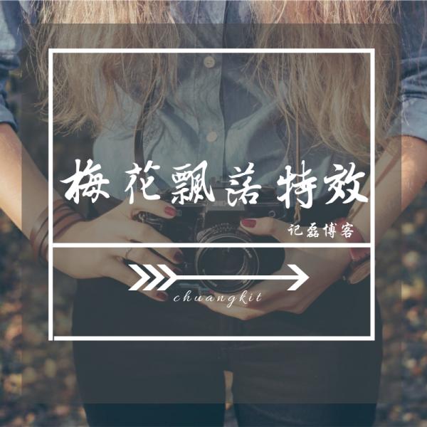 【折腾美化】网站页面的左右两侧代码添加梅花飘落特效